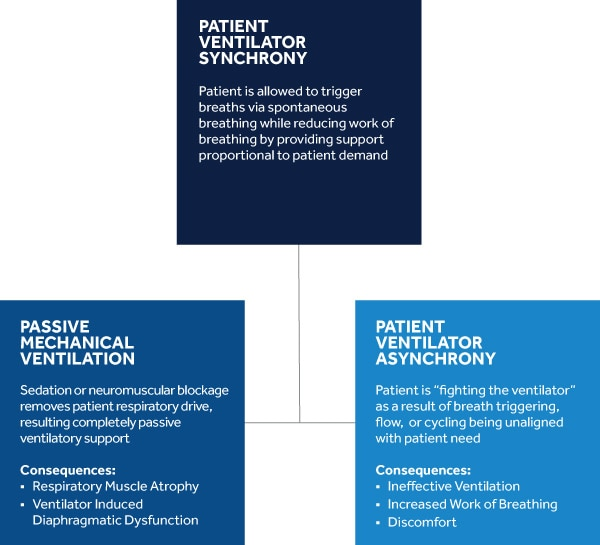 ventilated patients early mobility and sedation management Historically, early mobility was standard 10  ventilated patients  • streamline sedation management.