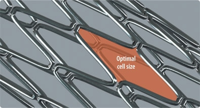 Integrity Optimal Cell Size US