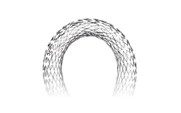 EverFlex Self-expanding Peripheral Stent with Entrust Delivery System