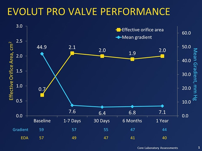 Evolut Pro Valve Performance