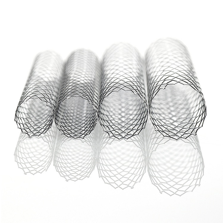 Protege GPS Self-expanding Peripheral and Biliary Stent