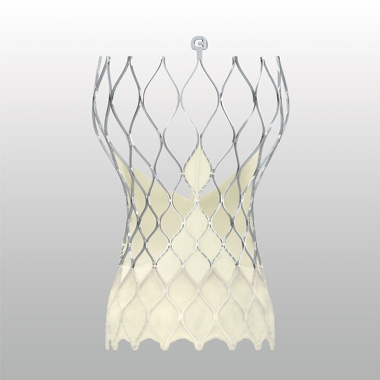 Image showing the outer wrap of the Evolut PRO Transcatheter Aortic Valve