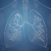 Medtronic Lung Health
